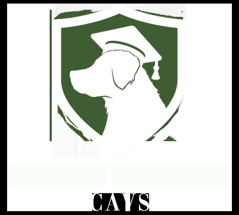 Recherche Cavs